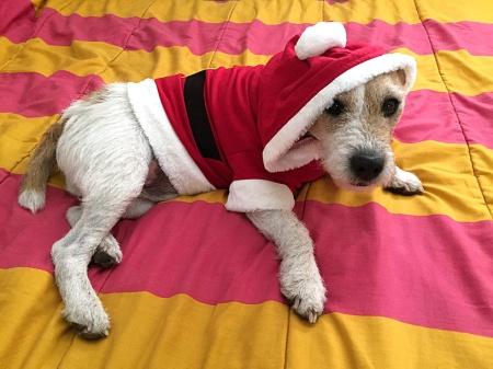 Sawyer_Santa